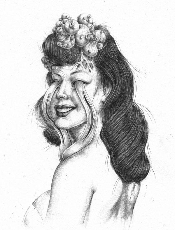 erotica-maple-5-600x788